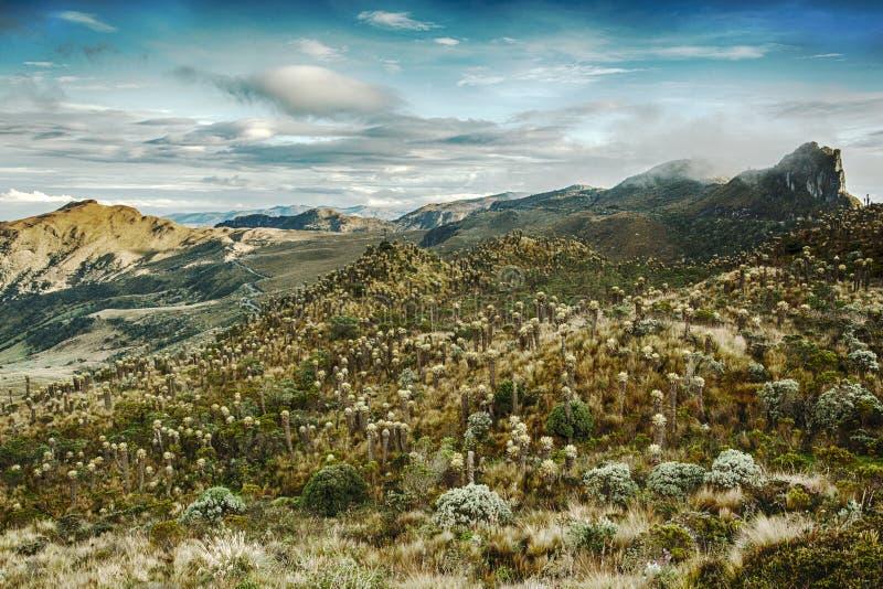 Άποψη της κοιλάδας Nevado del Ruiz, οροσειρά, Κολομβία, όμορφος κόσμος, φυσική άποψη στο ηφαίστειο με το νεφελώδη ουρανό, μεγαλοπ στοκ εικόνες