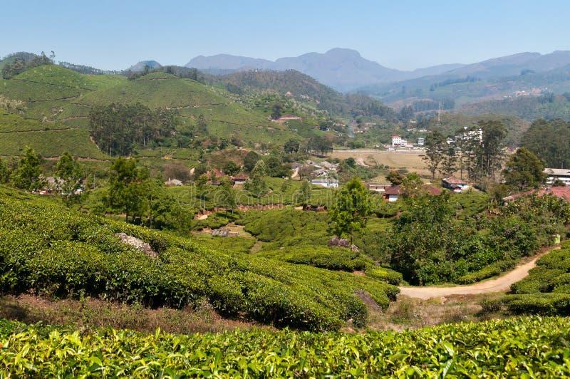 Άποψη της κοιλάδας φυτειών τσαγιού σε Munnar στοκ εικόνες