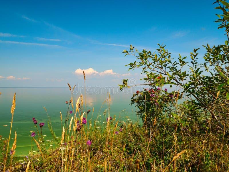 Άποψη της περιοχής της Ρωσίας Ilmen Novgorod λιμνών στοκ εικόνα με δικαίωμα ελεύθερης χρήσης