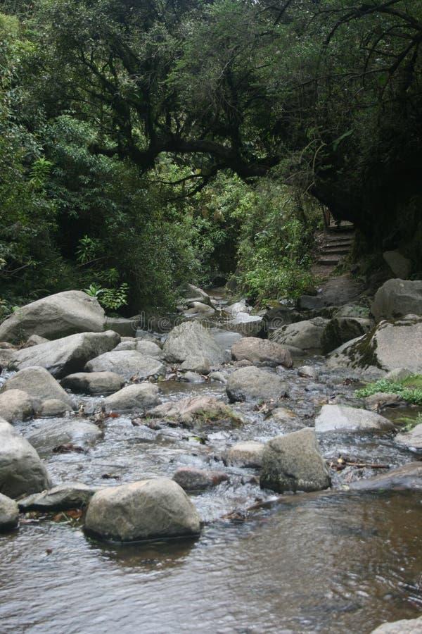 Άποψη της πορείας που οδηγεί κάτω στο ρεύμα που ρέει σε Cascada Taxopamba Otavalo Ισημερινός στοκ εικόνες με δικαίωμα ελεύθερης χρήσης