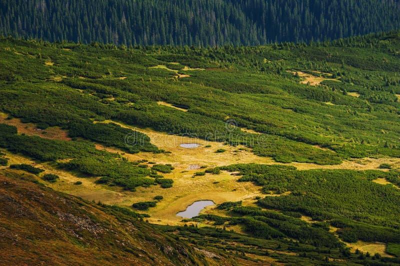 Άποψη τοπίων βουνών από Goverla στοκ εικόνες με δικαίωμα ελεύθερης χρήσης