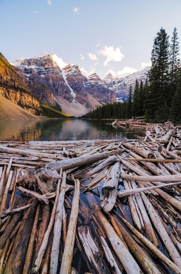 Άποψη τοπίων της λίμνης Moraine με τα νεκρά δέντρα στα καναδικά δύσκολα βουνά στοκ φωτογραφίες
