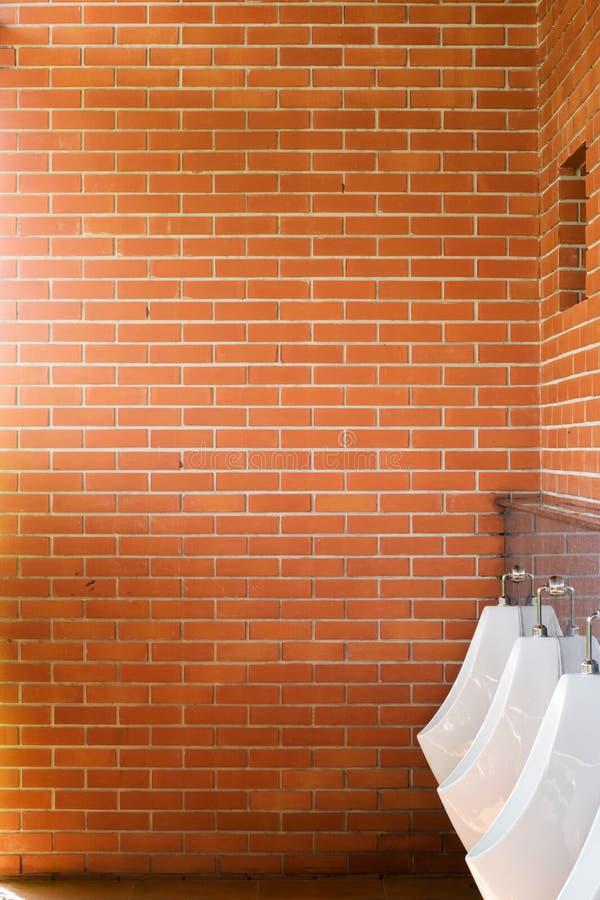 Άποψη τουαλετών από τα ουροδοχεία στοκ φωτογραφία