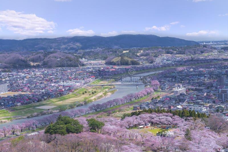 Άποψη του άνθους κερασιών ή του φεστιβάλ Hitome Senbon Sakura στην όχθη ποταμού Shiroishi και την πόλη, πάρκο καταστροφών Funaoka στοκ φωτογραφία
