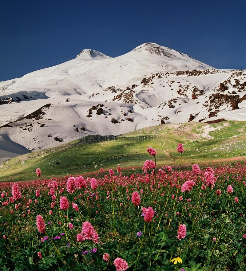 Άποψη του βουνού Elbrus στοκ εικόνες με δικαίωμα ελεύθερης χρήσης