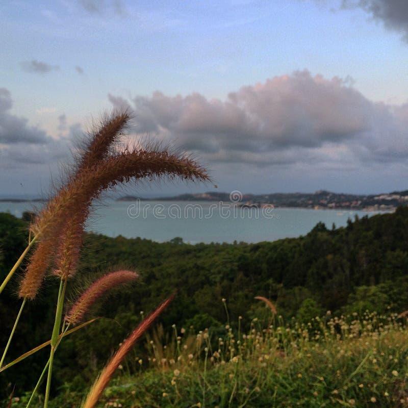 Άποψη του νησιού στοκ εικόνες