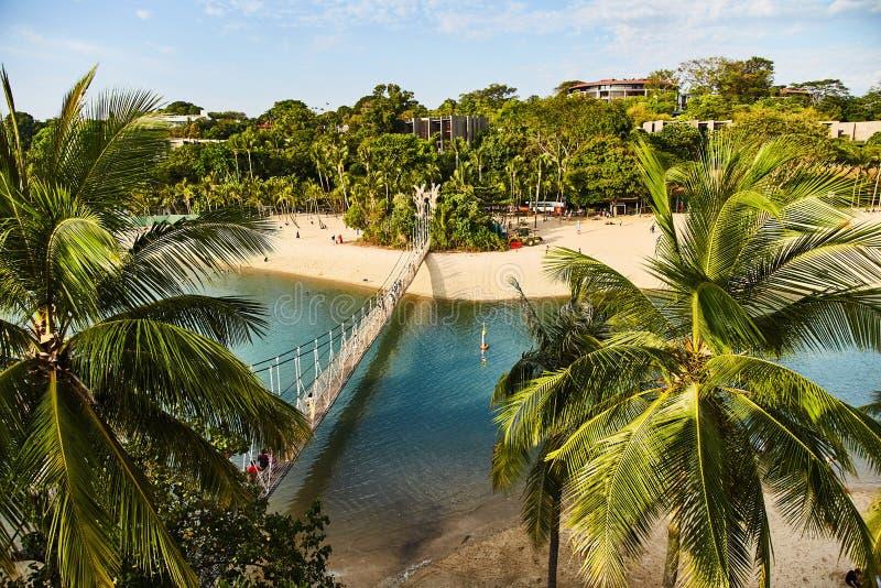 Άποψη του πάρκου και της γέφυρας αναστολής του νησιού Sentosa στοκ εικόνα με δικαίωμα ελεύθερης χρήσης