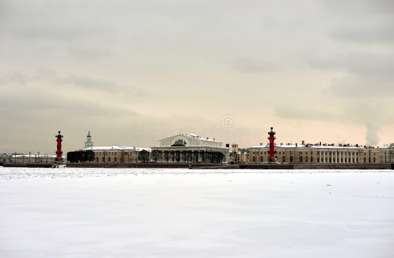 Άποψη του παγωμένων ποταμού Neva και του νησιού Vasilyevsky οβελών στοκ φωτογραφία με δικαίωμα ελεύθερης χρήσης