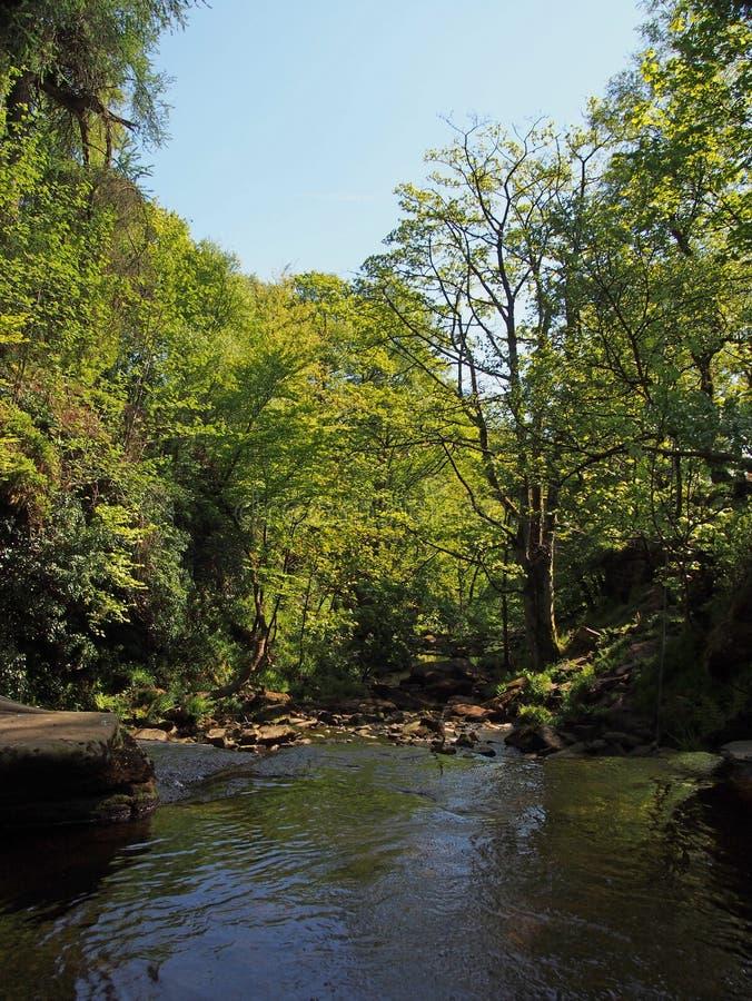 Άποψη του ποταμού και της κοιλάδας στην τρύπα lumb στη δασώδη περιοχή στον κοσμήτορα crimsworth pecket πλησίον καλά στο calderdal στοκ εικόνα