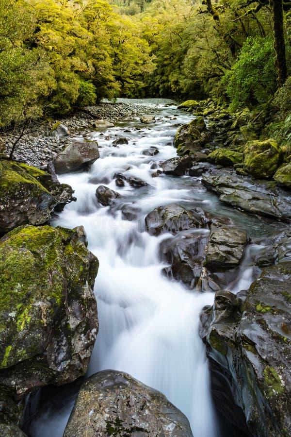 Άποψη του ποταμού και του καταρράκτη στο χάσμα, milford ήχος στοκ φωτογραφίες