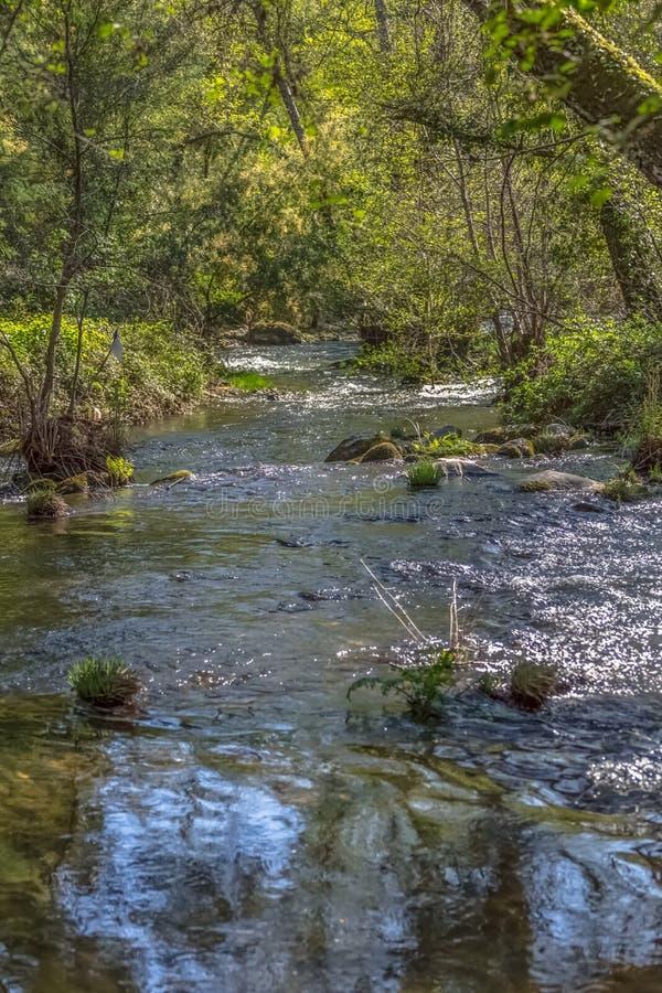 Άποψη του ποταμού DÃo, με τα δέντρα, τους βράχους και τη βλάστηση στις τράπεζες, τις αντανακλάσεις στο νερό και τα φωτεινά χρώμα στοκ φωτογραφίες