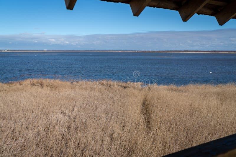 Άποψη του πύργου προσοχής πουλιών σε μια μεγάλη λίμνη στοκ εικόνες