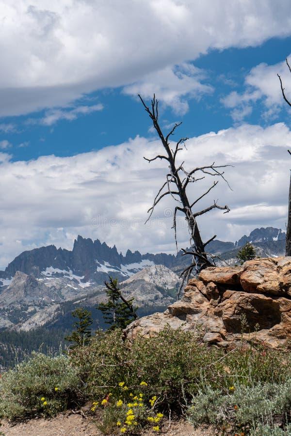 Άποψη των μιναρών από Vista μιναρών στις μαμμούθ λίμνες Καλιφόρνια στην ανατολική οροσειρά στοκ εικόνες