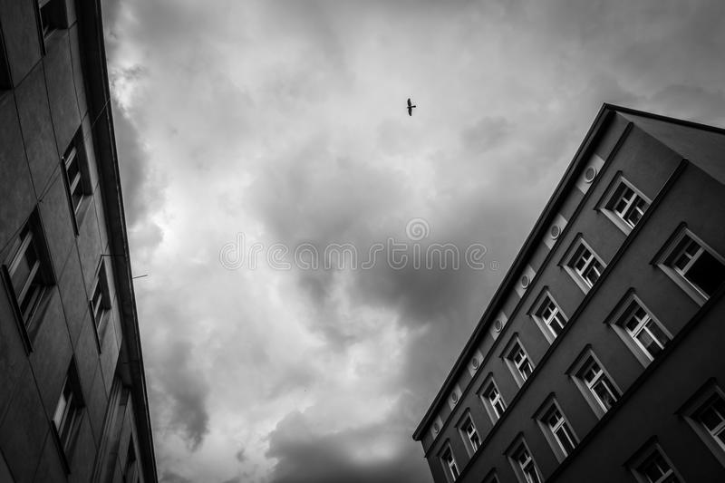 Άποψη των παλαιών σπιτιών κατοικιών σε Bydgoszcz στοκ φωτογραφίες με δικαίωμα ελεύθερης χρήσης