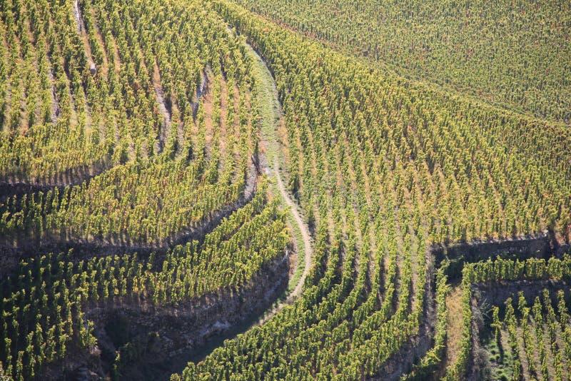 Άποψη λόφων ερημητηρίων στοκ φωτογραφίες με δικαίωμα ελεύθερης χρήσης