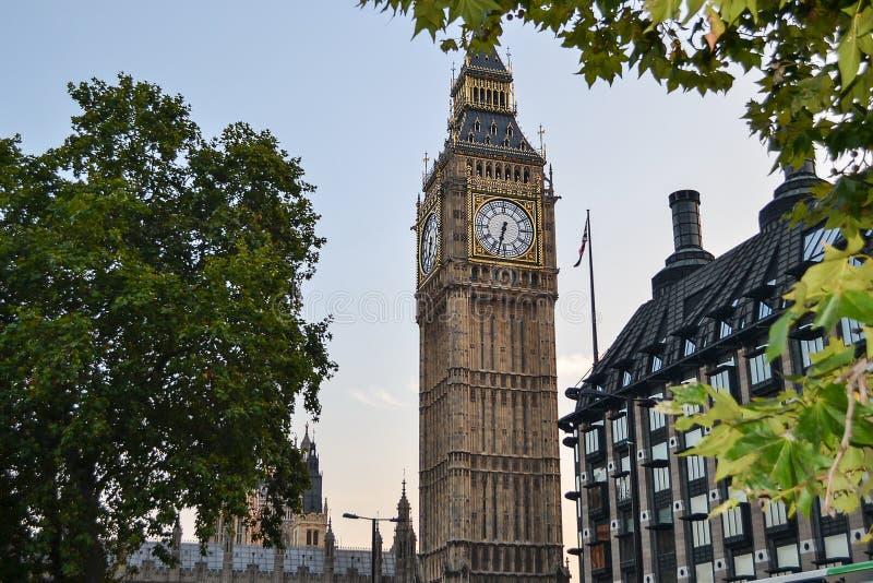 Άποψη Big Ben από πίσω από τα δέντρα βασίλειο που ενώνεται Λονδίνο στοκ εικόνα