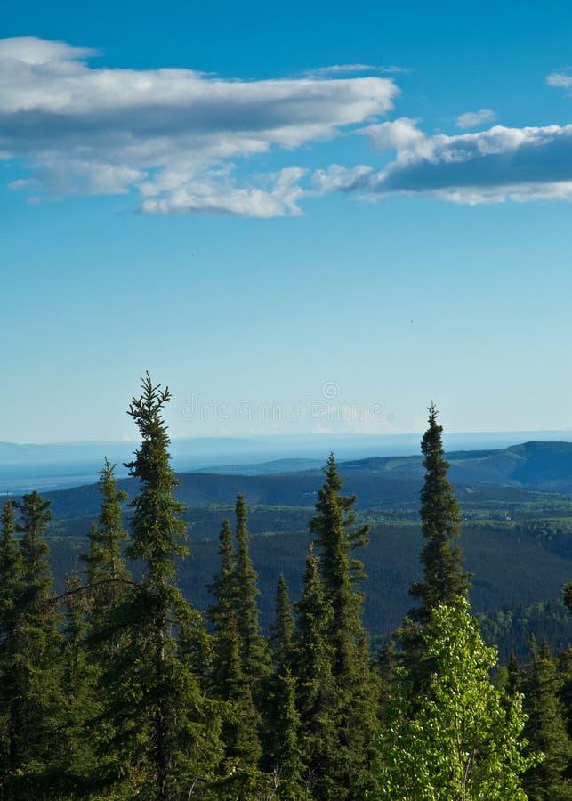 Άποψη Denali από Fairbanks στοκ φωτογραφίες με δικαίωμα ελεύθερης χρήσης