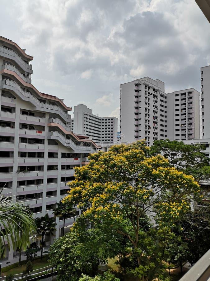 Άποψη Hdb σε Σινγκαπούρη στοκ φωτογραφία