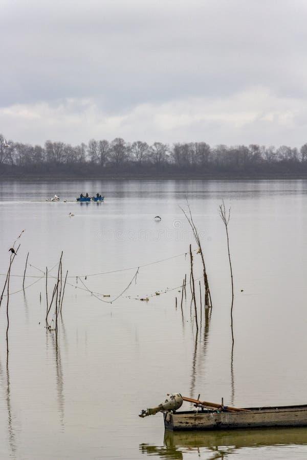 Άποψη Kerkini Φεβρουάριος λιμνών με ένα αλιευτικό σκάφος και δαλματικούς πελεκάνους στην απόσταση στοκ φωτογραφίες με δικαίωμα ελεύθερης χρήσης
