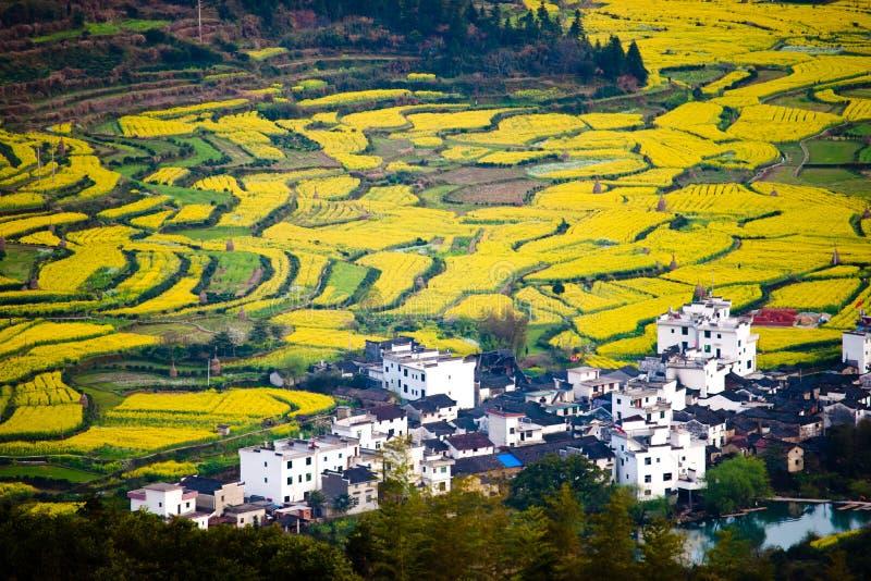 Άποψη Overrall του αγροτικού τοπίου στο wuyuan νομό, επαρχία jiangxi, Κίνα στοκ εικόνες με δικαίωμα ελεύθερης χρήσης