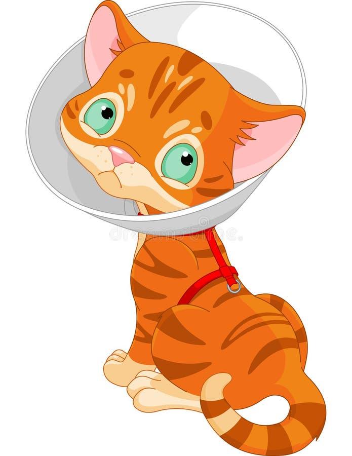 Άρρωστο χαριτωμένο γατάκι απεικόνιση αποθεμάτων