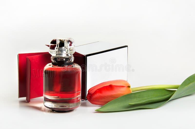 Άρωμα σε ένα μπουκάλι και μια τουλίπα σε ένα άσπρο υπόβαθρο στοκ φωτογραφίες