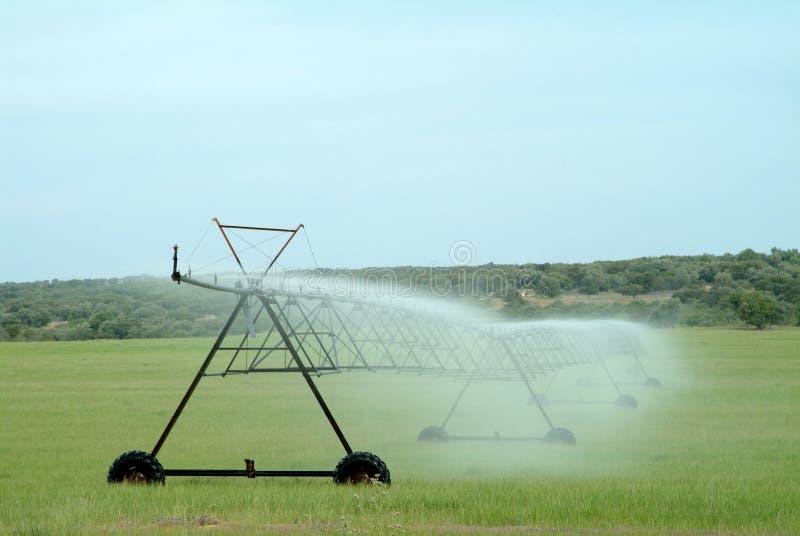 Άρδευση ψεκαστήρων που ποτίζει τον καλλιεργημένο τομέα στοκ φωτογραφία