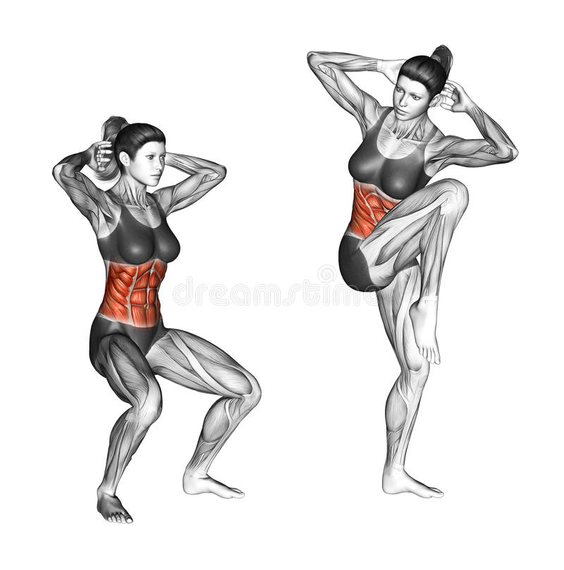 Άσκηση ικανότητας Κοντόχοντρη κρίσιμη στιγμή τετάρτων θηλυκό διανυσματική απεικόνιση