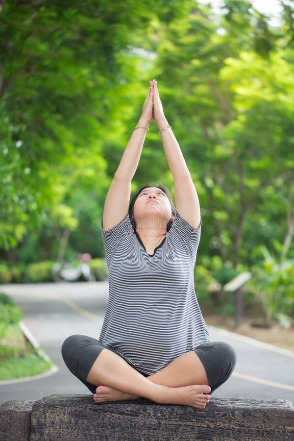Άσκηση και γιόγκα εγκύων γυναικών στο πάρκο στοκ φωτογραφία με δικαίωμα ελεύθερης χρήσης
