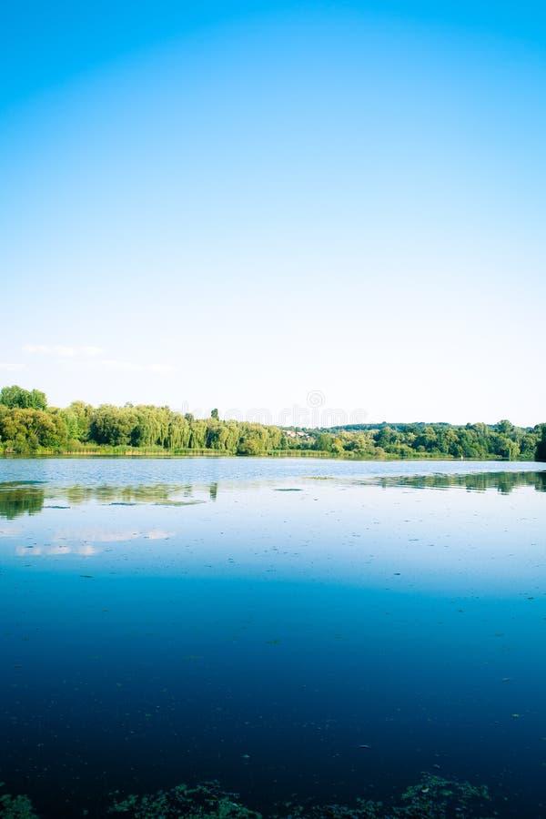 δάσος γραφικό στοκ φωτογραφία με δικαίωμα ελεύθερης χρήσης