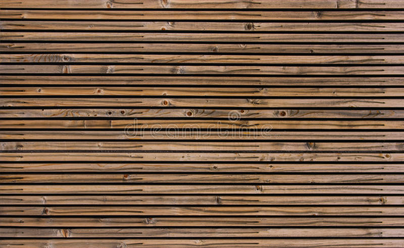 δάσος σανίδων προτύπων στοκ φωτογραφίες με δικαίωμα ελεύθερης χρήσης