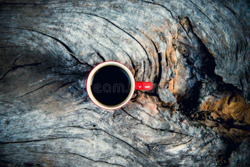 δάσος φλυτζανιών καφέ στοκ φωτογραφία