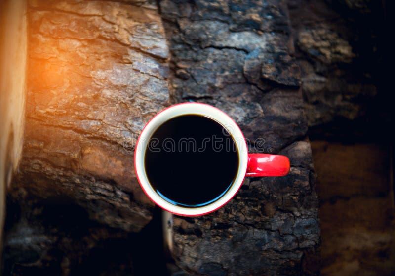 δάσος φλυτζανιών καφέ στοκ εικόνες