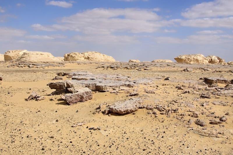 Άσπρα έρημος και μαγγάνιο στοκ φωτογραφία με δικαίωμα ελεύθερης χρήσης