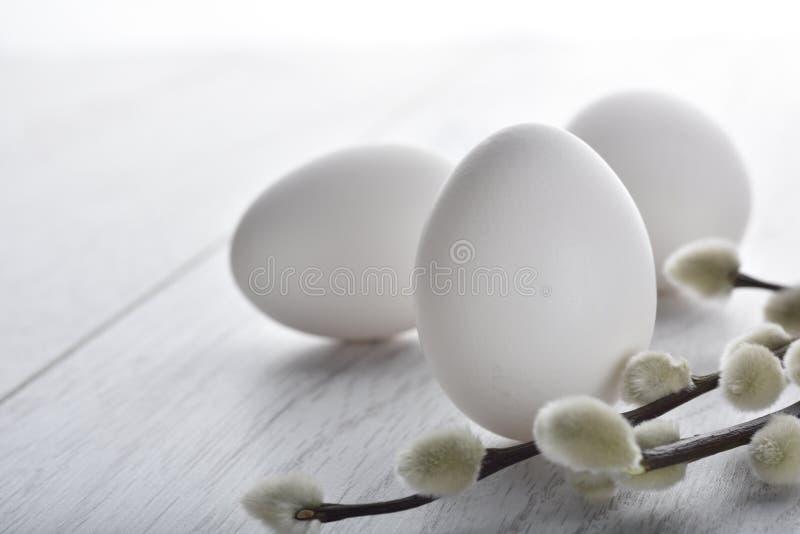 Άσπρα αυγά Πάσχας με τον κλάδο στοκ φωτογραφίες