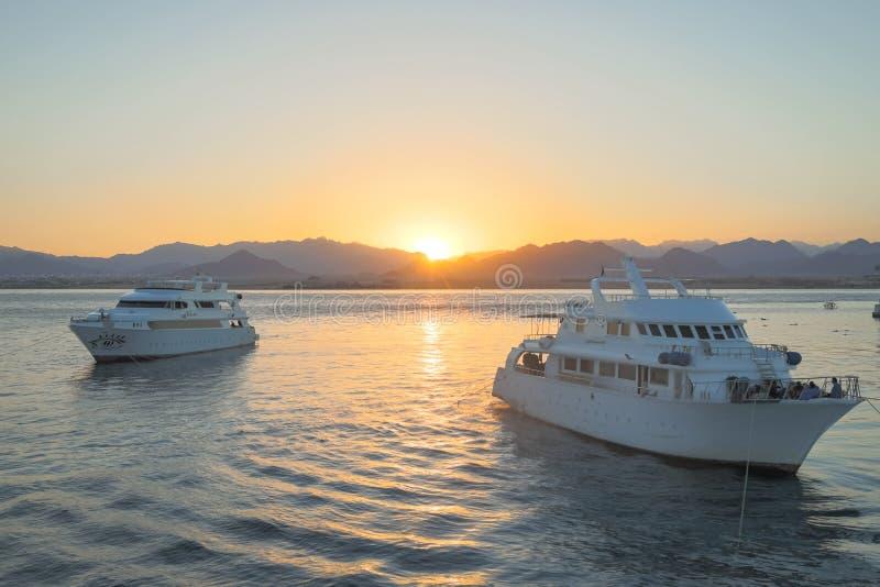 Άσπρα γιοτ στη Ερυθρά Θάλασσα στο ηλιοβασίλεμα στοκ φωτογραφίες