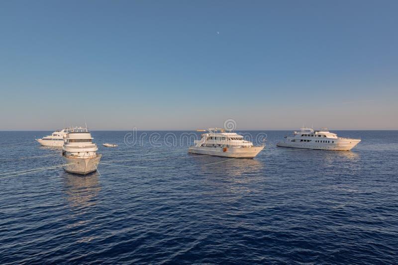 Άσπρα γιοτ στη Ερυθρά Θάλασσα στο ηλιοβασίλεμα στοκ φωτογραφίες με δικαίωμα ελεύθερης χρήσης
