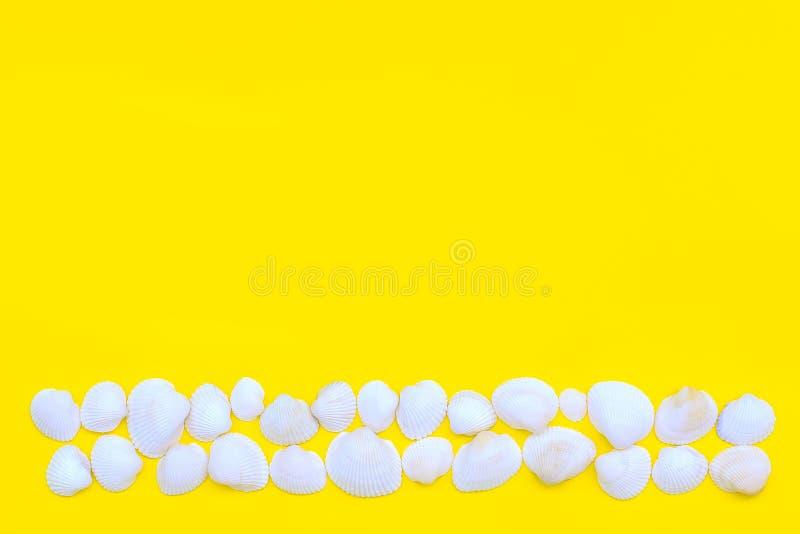 Άσπρα κοχύλια θάλασσας που σχεδιάζονται ως λουρίδα ή γραμμή σε ένα φωτεινό κίτρινο υπόβαθρο Καυτό θέμα καλοκαιριού και παραλιών r στοκ φωτογραφία