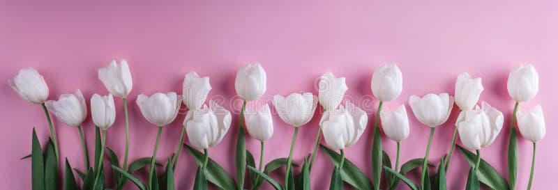 Άσπρα λουλούδια τουλιπών πέρα από το ανοικτό ροζ υπόβαθρο Ευχετήρια κάρτα ή γαμήλια πρόσκληση στοκ εικόνες