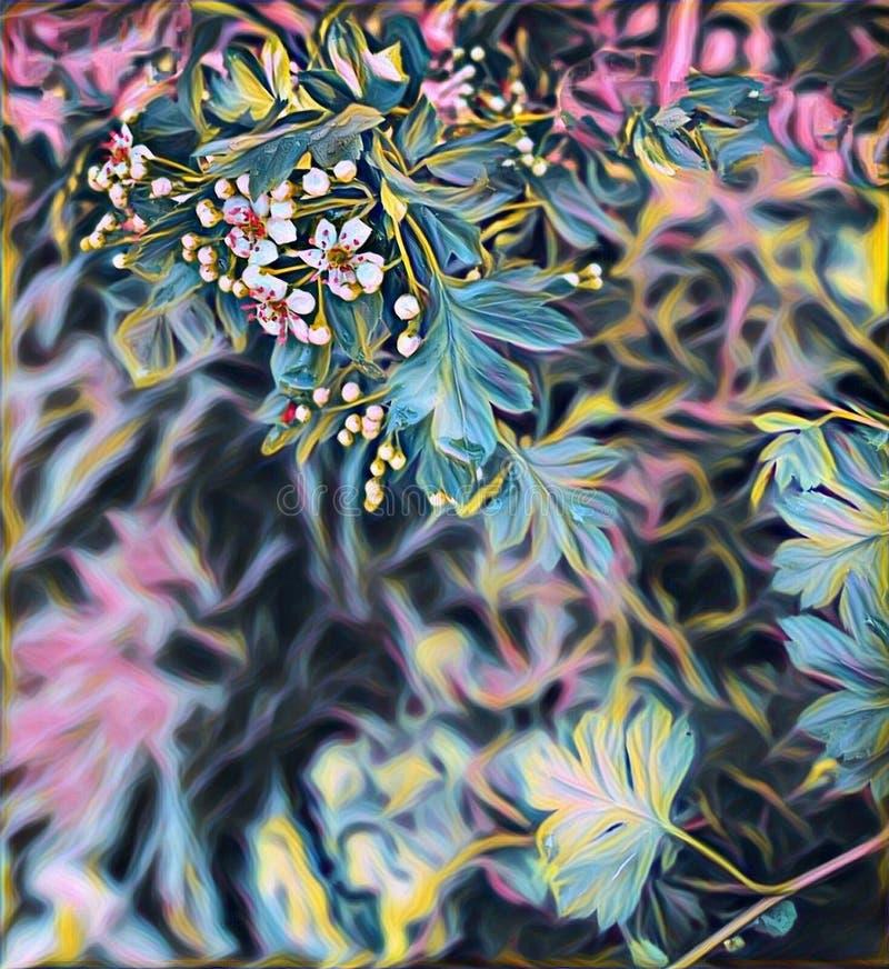 Άσπρα λουλούδια του κραταίγου την άνοιξη στον κήπο στοκ εικόνα με δικαίωμα ελεύθερης χρήσης