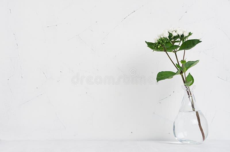 Άσπρα μικρά λουλούδια στο διαφανές βάζο στο μαλακό άσπρο ξύλινο πίνακα με εγχώριο ντεκόρ κομψότητας αντιγράφων το διαστημικό, σύγ στοκ φωτογραφία
