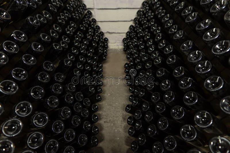 Άσπρα μπουκάλια λαμπιρίζοντας κρασιού στα κελάρια της οινοποιίας, λαμπιρίζοντας κρασί που ζυμώνομαει στις στάσεις στοκ φωτογραφίες