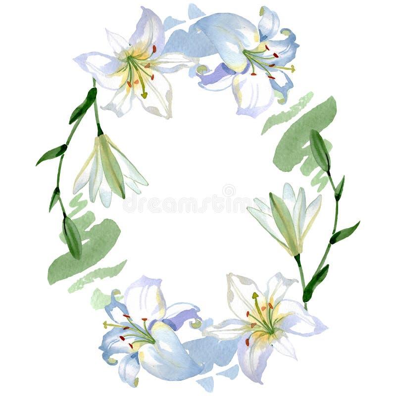 Άσπρα floral βοτανικά λουλούδια κρίνων r r στοκ φωτογραφία