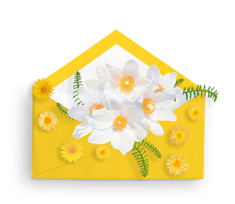 Άσπρα snowdrops στον κίτρινο φάκελο και τα κίτρινα μικρά λουλούδια Επίπεδος βάλτε Τοπ όψη πράσινη κοιλάδα άνοιξη κρίνων φύλλων υά στοκ εικόνα με δικαίωμα ελεύθερης χρήσης
