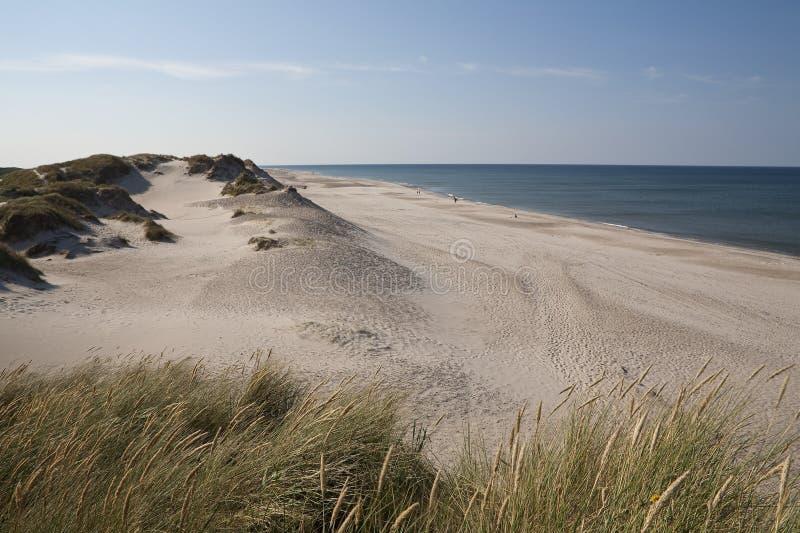 Άσπρες άμμοι, Δανία στοκ φωτογραφίες
