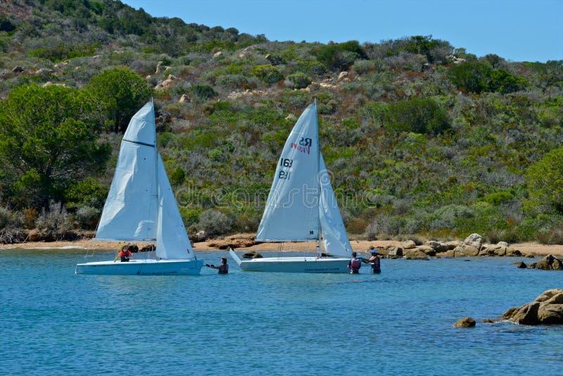 Άσπρες βάρκες πανιών με τους ανθρώπους που μαθαίνουν να πλέει στην μπλε θάλασσα που περιβάλλεται από τη φύση στοκ εικόνες