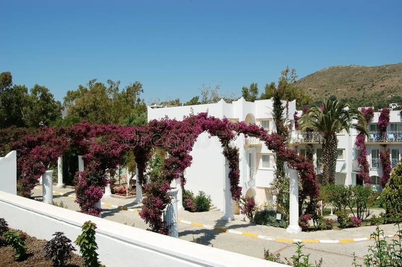 Άσπρες βίλες και αψίδες των ιωδών λουλουδιών στο έδαφος του θορίου στοκ εικόνες