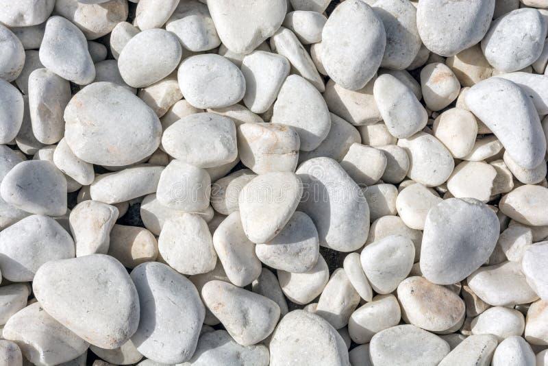 Άσπρες διακοσμητικές πέτρες ως διακοσμητικό σχέδιο πατωμάτων στον κήπο στοκ εικόνα με δικαίωμα ελεύθερης χρήσης