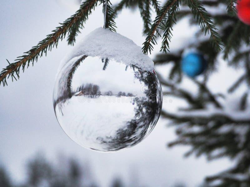 Άσπρες και χρωματισμένες σφαίρες Χριστουγέννων σε ένα δέντρο οδών κάτω από το χιόνι στοκ εικόνα
