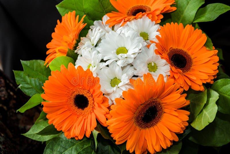 Άσπρες μαργαρίτες και πορτοκαλιά gerberas στοκ φωτογραφία